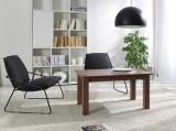 Zobrazit detail - konferenční stolek K 30 slíva walis