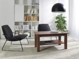Zobrazit detail - konferenční stolek K 31 slíva walis