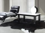 Zobrazit detail - konferenční stolek T 24 lesk